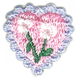 Heart with Flower and Blue Border